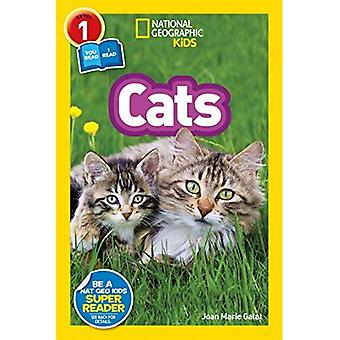 National Geographic Kids lecteurs: Chats (National Geographic Kids lecteurs: niveau 1) (National Geographic Kids lecteurs: niveau 1)