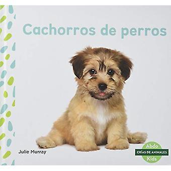 Cachorros de Perros (Cr�as de Animales (Baby Animals))