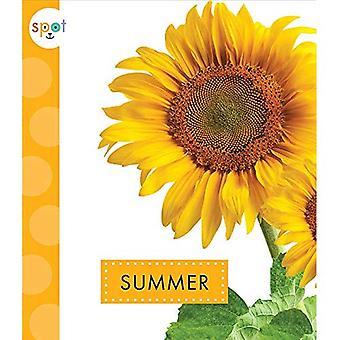 Summer (Spot Seasons)