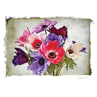 Artist Series Photo Card W/Envelope-Anemones C0007E