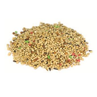 Arquivet Parakeets Mix 1Kg (Birds , Bird Food)