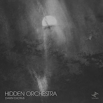Skjulte orkester - Dawn Chorus [CD] USA importerer