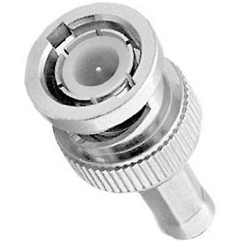 BNC connector Plug, straight 50 Ω Amphenol B1121A1-ND3G-1-50 1 pc(s)