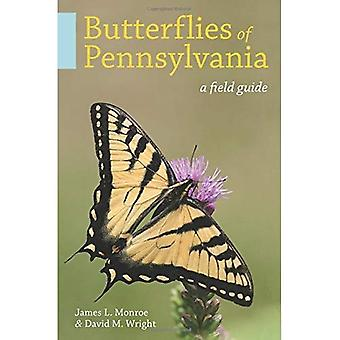 Butterflies and Skippers of� Pennsylvania: A Field Guide