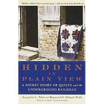 Hidden in Plain View - A Secret Story of Quilts and the Underground Ra