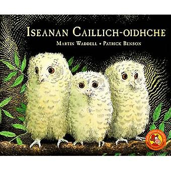 Iseanan Caillich-Oidhche by Martin Waddell - 9780861525881 Book