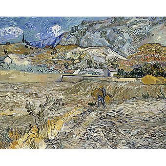 Vincent Van Gogh - Enclosed Field with Peasant Poster Print Giclee