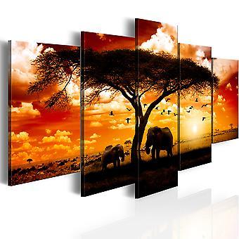 Billede - Flok af fugle over savannen