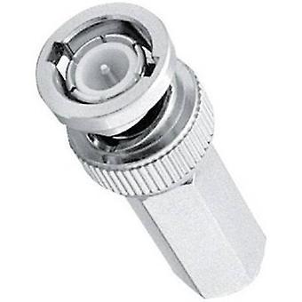 BNC connector Plug, straight 75 Ω Amphenol B1131A1-ND3G-3-75 1 pc(s)