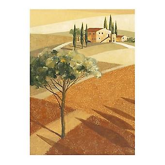Toscana II Poster Print by Carlo Colombo (16 x 20)