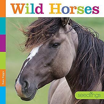 Semis: Les chevaux sauvages (semis)