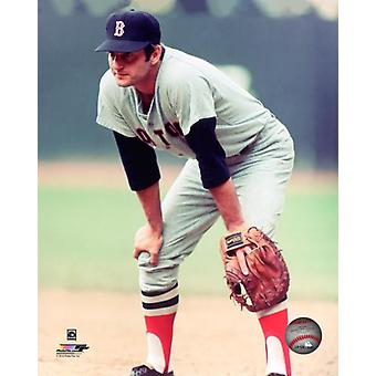 Carl Yastrzemski 1965 Action Photo Print