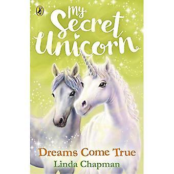 Il mio segreto dell'unicorno