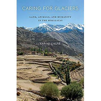 S'occuper des Glaciers: terre, les animaux et l'humanité dans l'Himalaya