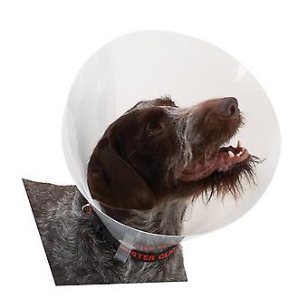 Buster Classic Collar Transparent 10cm 10pc