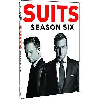 Suits: Season Six [DVD] USA import