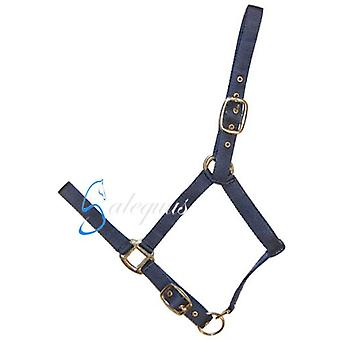 Galequus Nylon Bridle Double Full Spanish Flag