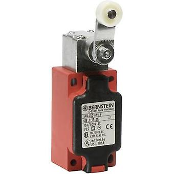 Limit switch 240 V AC 10 A Pivot lever momentary B