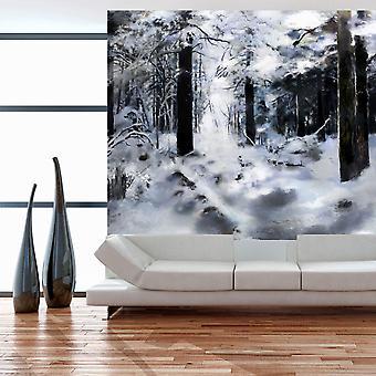 Fond d'écran - forêt d'hiver