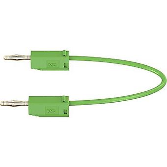 Stäubli LK205 Test lead [Banana jack 2 mm - Banana jack 2 mm] 0.6 m Green