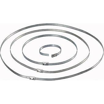 Conrad Components 546574 Cable tie 201 mm Silver 10 pc(s)
