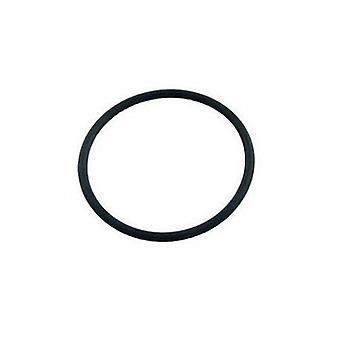 Pentair 86006900 Clean & Clear Plus FNS Plus Bulkhead O-Ring