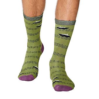 Starboard men's super-soft bamboo crew socks in green | By Thought