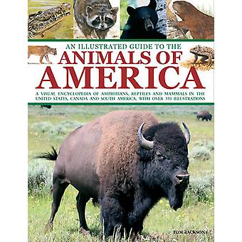 An Illustrated Guide to the Animals of America - a Visual Encyclopedia