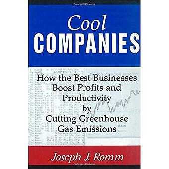 Cool Companies: How the Best Businesses Boost Profits and Productivity by Cutting Greenhouse-Gas Emissions