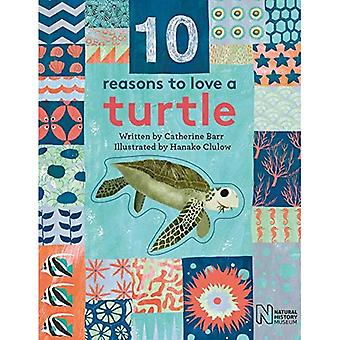 10 Reasons to Love a... Turtle (10 reasons to love� a...)