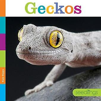 Seedlings - Geckos by Kate Riggs - 9781628324839 Book