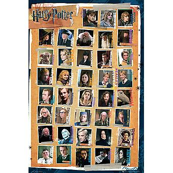 Harry Potter Characters Poster Poster Print