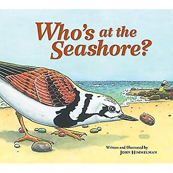 Who's at the Seashore?