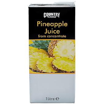 Land Auswahl Ananas Saft Früchtekörbe