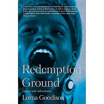 Redemption Ground: Essays on Poetry, People and Place