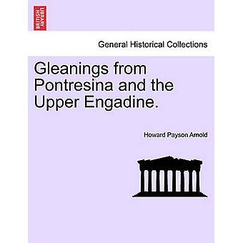 Gleanings from Pontresina and the Upper Engadine. by Arnold & Howard Payson