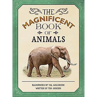 The Magnificent Book of Animals by Tom Jackson - Val Walerczuk - 9781