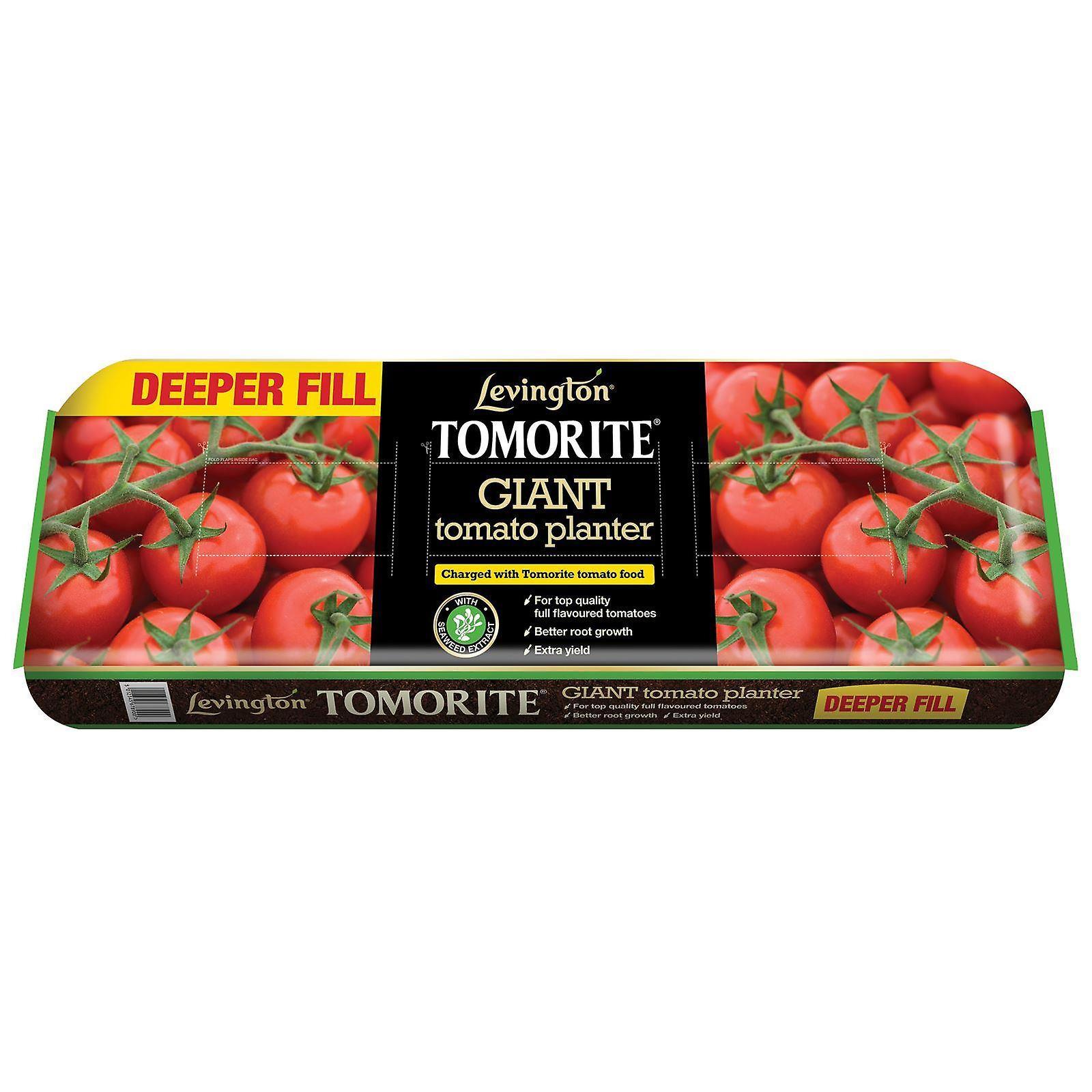 Plantador de tomate gigante de Levington Tomorite