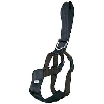 Ica Auto Belt (Dogs , Transport & Travel , Travel & Car Accessories)
