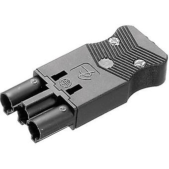 Mains connector AC Series (mains connectors) AC Plug, straight Total number of pins: 2 + PE 16 A Black Adels-Contact AC 166 GSTPF/ 3 1 pc(s)