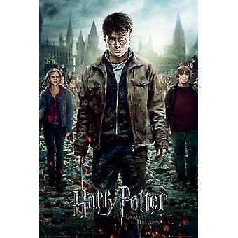 Harry Potter 7 część 2 jeden arkusz Maxi 61x91.5cm plakat