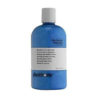 Anthony Logistics Blue Sea Kelp Body Scrub 355ml