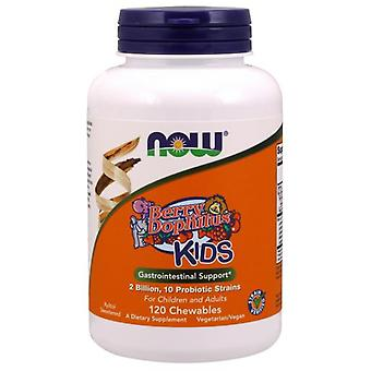 Now Foods Chewable BerryDophilus 120 Chewable