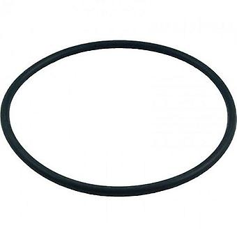 Pentair 272541 O-Ring for Pool or Spa Filter and Valve