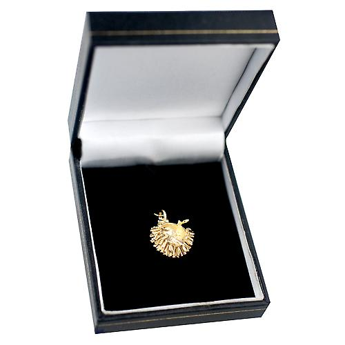 9ct Gold 12x21mm Hedgehog Pendant or Charm