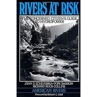 Rivers at Risk by John D Echeverria - Pope Barrow - Richard Roos-Coll