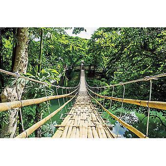 Jungle brug poster