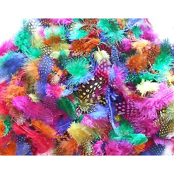 25g Mixed Exotic Craft Feathers | Scrapbooking Card Making Embellishments
