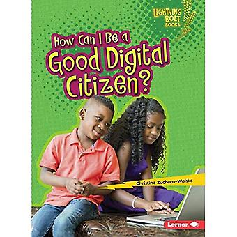Miten hyvä Digital Citizen voi olla? (Salama kirjat digitaalisessa maailmassa)