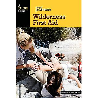 Basic Illustrated Wilderness First Aid (Basic Illustrated Series)